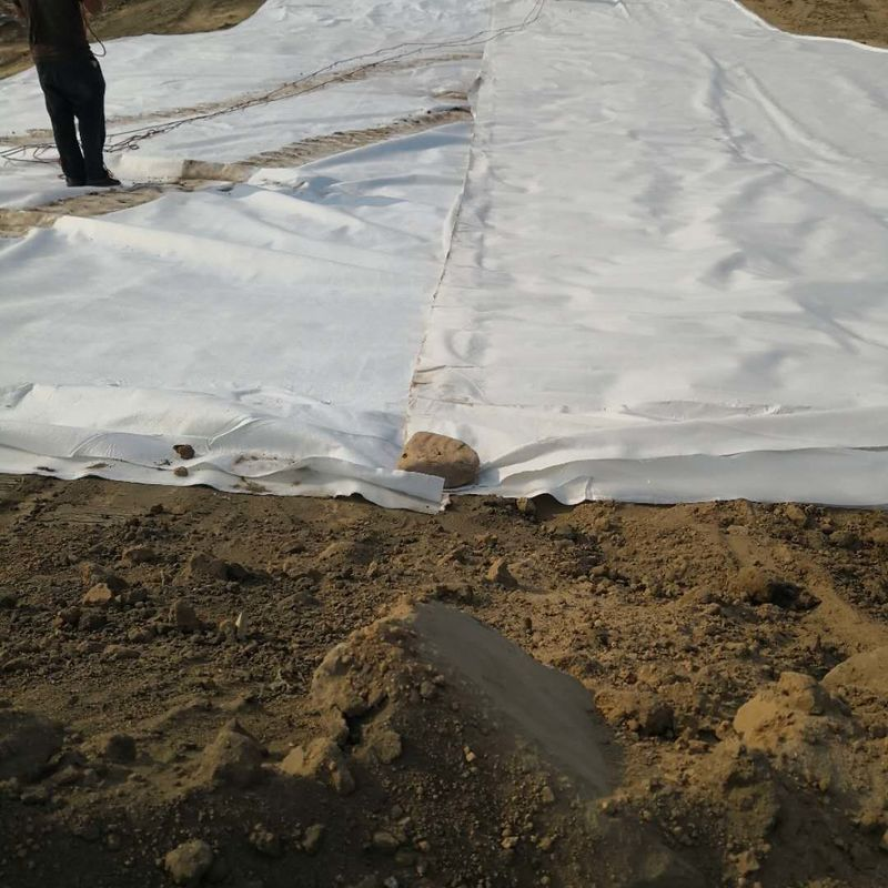 1.5mm 300gsm Ldpe Hdpe Composite Geomembrane